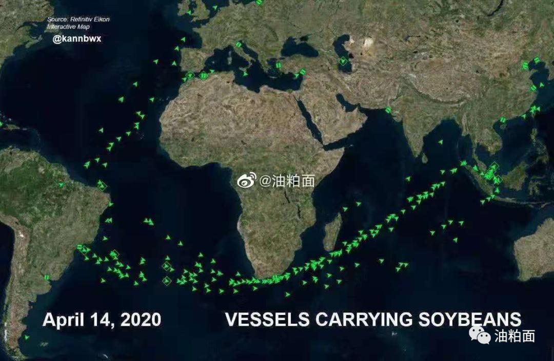 巴西大豆开始大量到港
