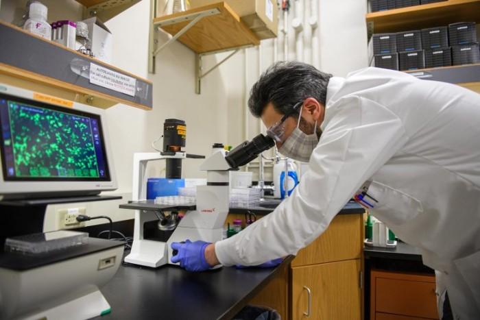 """科学家发现COVID-19会引起肺部""""意想不到""""的细胞反应"""