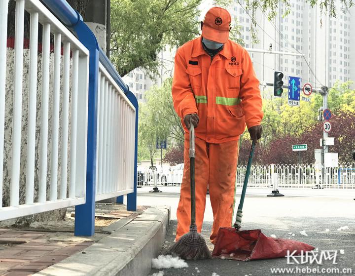 邢台:柳絮纷飞扰路人 环卫工人忙清理