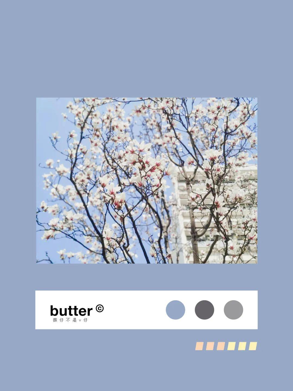 赤橙黄绿青蓝紫,武汉理工春天花花色卡请查收!图片