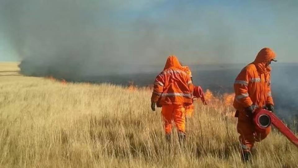 蒙古国草原大火已全部被扑灭