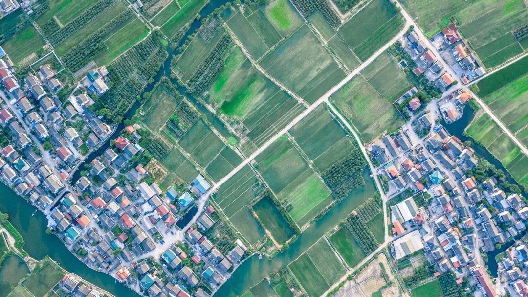 姚洋:城市化2.0与乡村振兴的内在逻辑图片