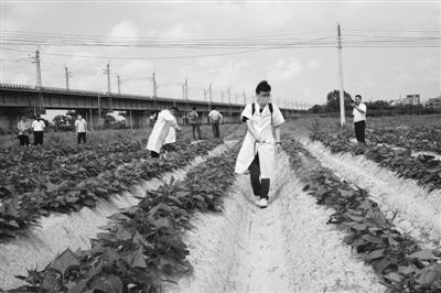 调研农村科技需求 打造五位一体科技服务模式
