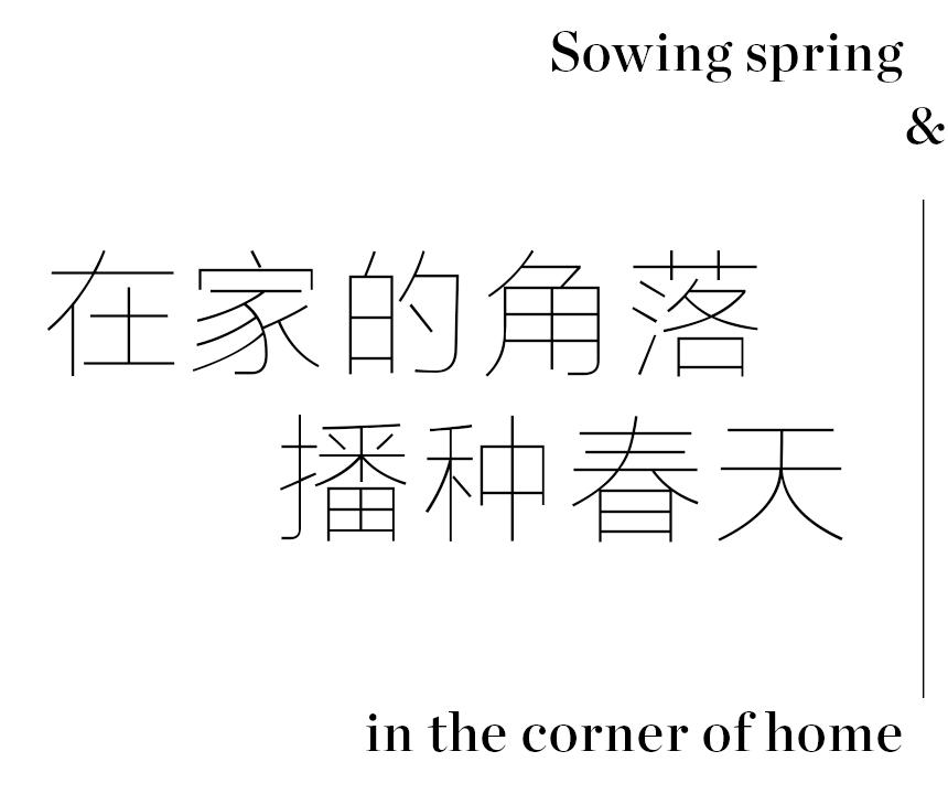 花与绿植足不出户的春日浪漫