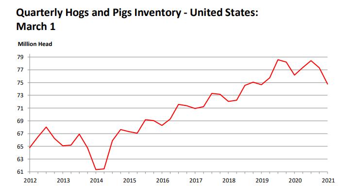 美国猪价上涨 国内猪价走低