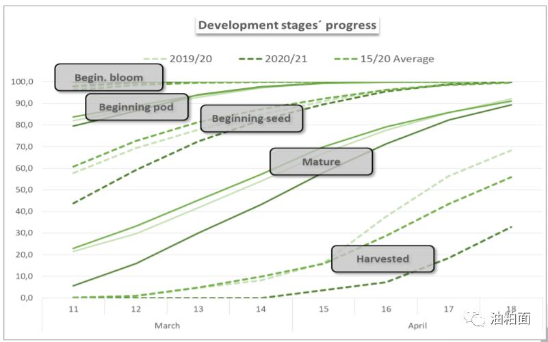 玉米涨停,带动美豆大涨