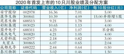 """10川股首亮""""成绩单"""" 回报股民多少"""