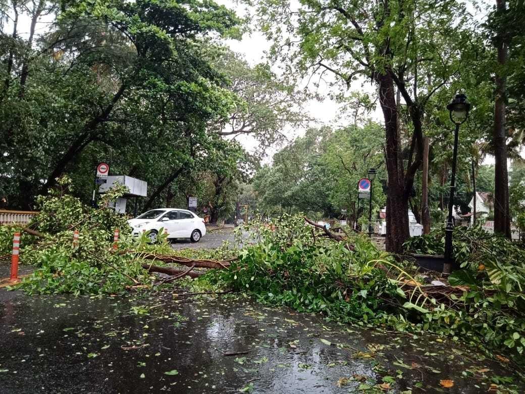 印度气旋风暴强度升级已致4人死亡,有新冠诊疗医院断电