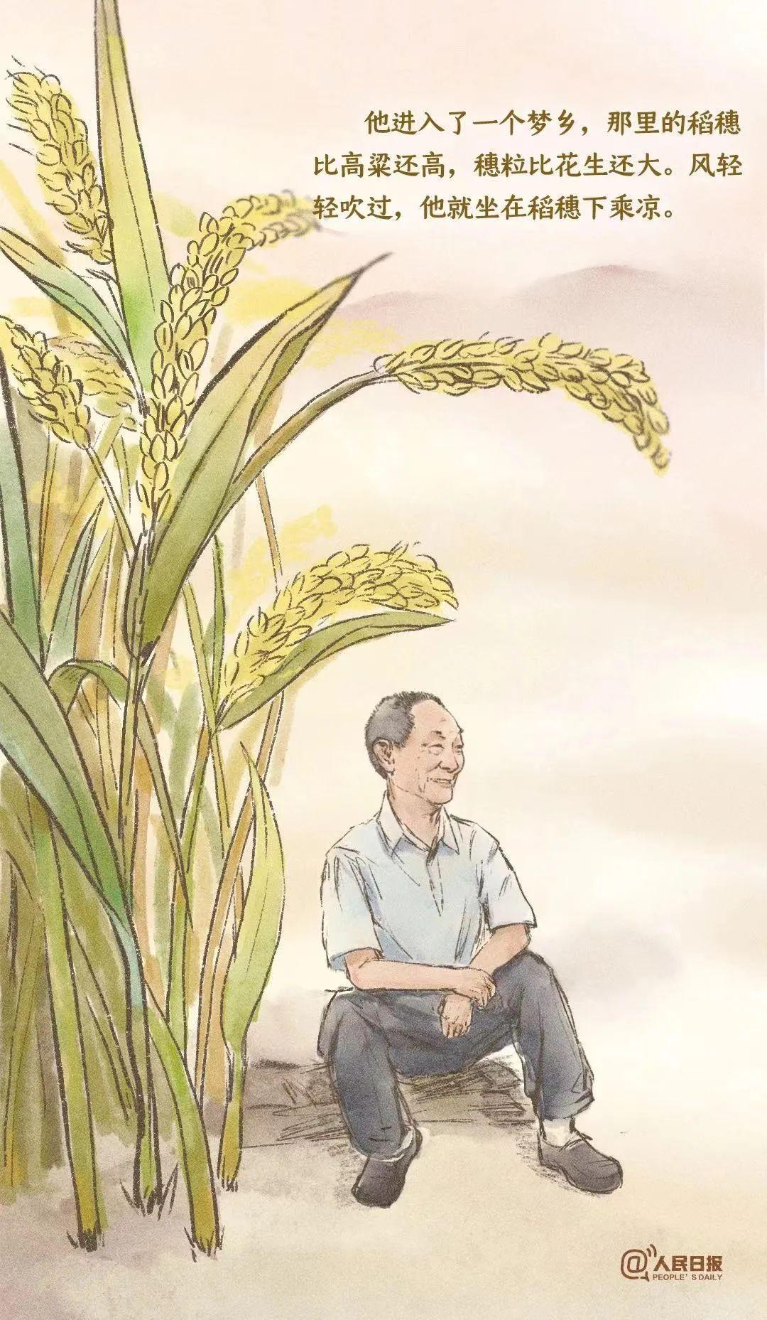 风吹过稻田 我们就想起了你
