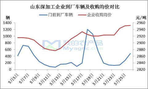 """我的农产品:玉米市场""""涨看山东,跌看广东""""还存在吗?"""