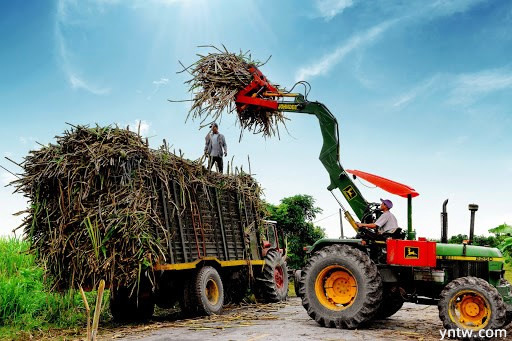 越南国内糖价上涨 反倾销调查泰国进口糖 进口量受限