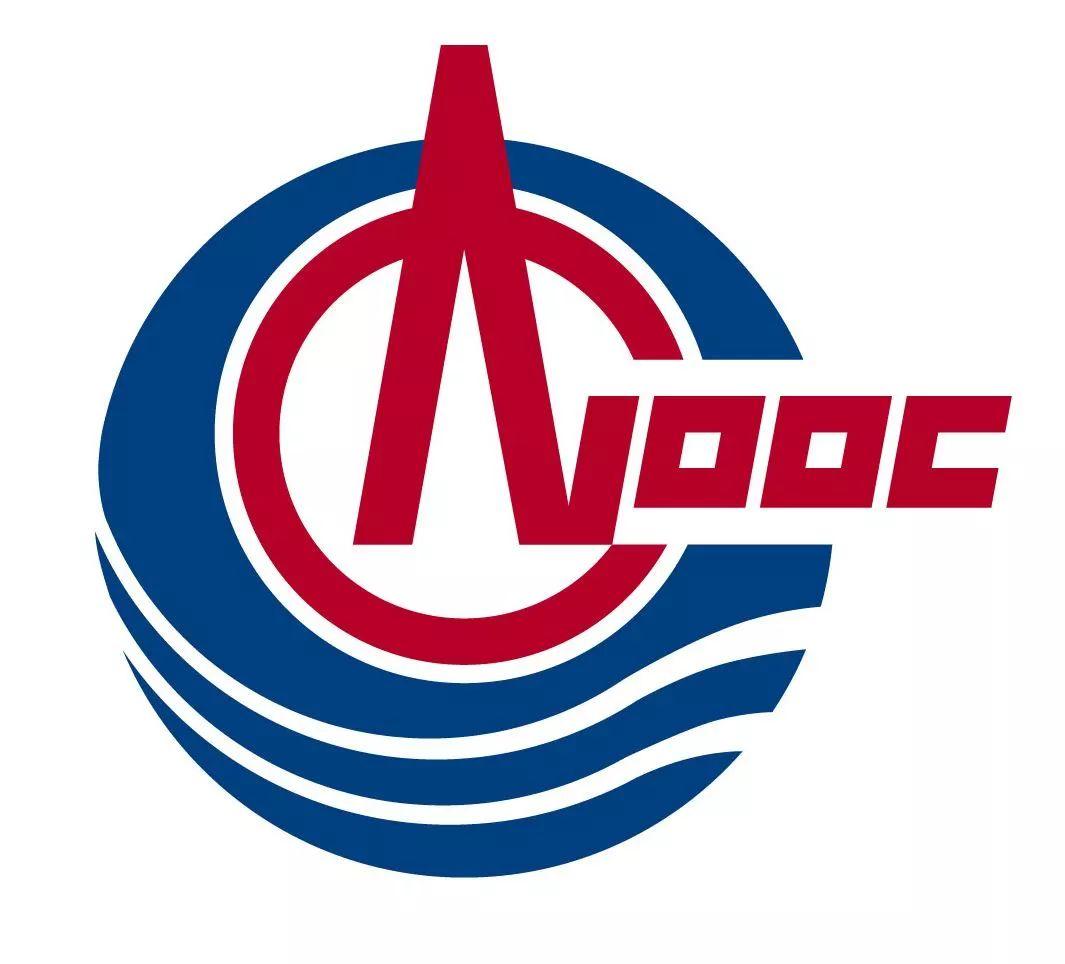 中海油联合中电集团、深圳能源、西门子能源发布倡议书
