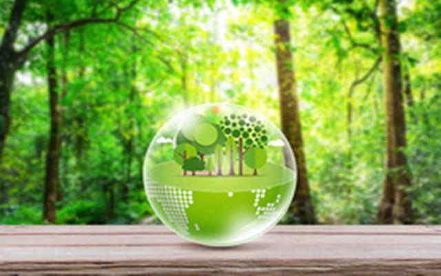 关于碳定价、碳金融、碳投资 中外大咖的发言亮了