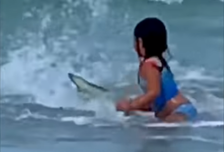 美国6岁女孩海滩遇鲨鱼 妈妈无意中录下惊险瞬间