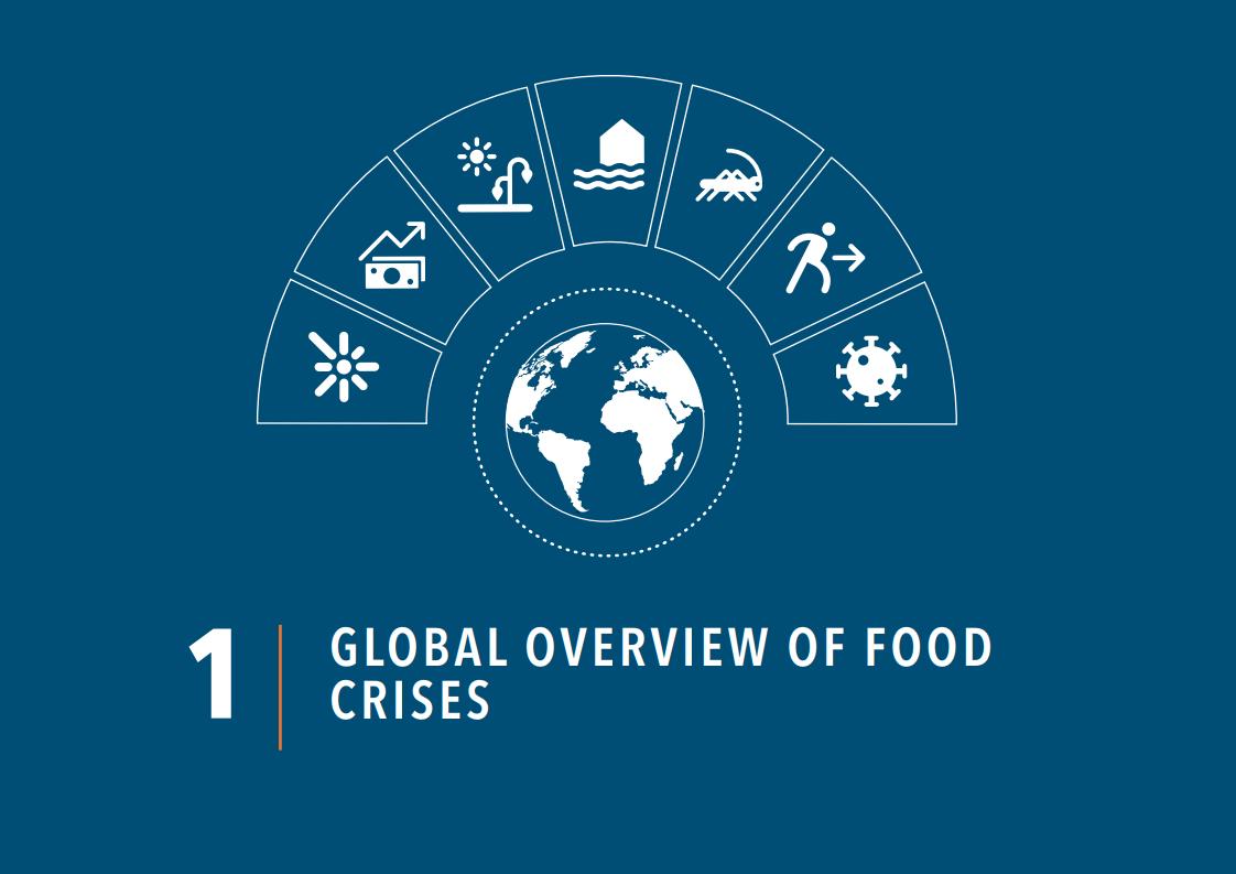 世界粮食计划署:2021年全球粮食危机报告