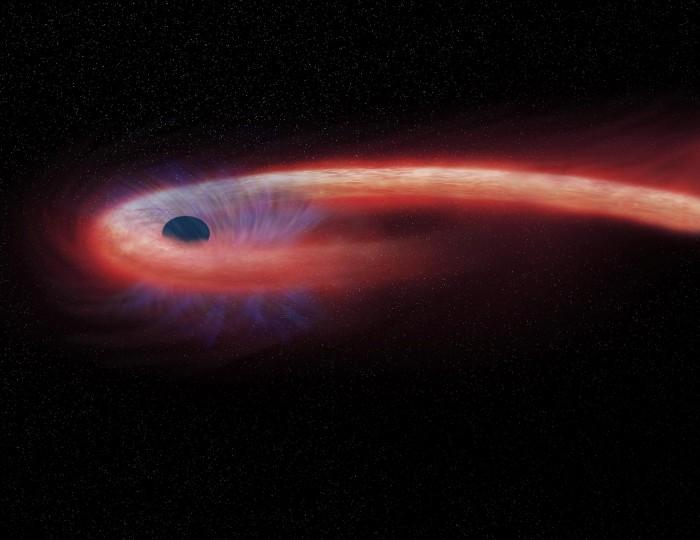 天文学家首次探测到被黑洞消化的恒星传达出的最后讯息