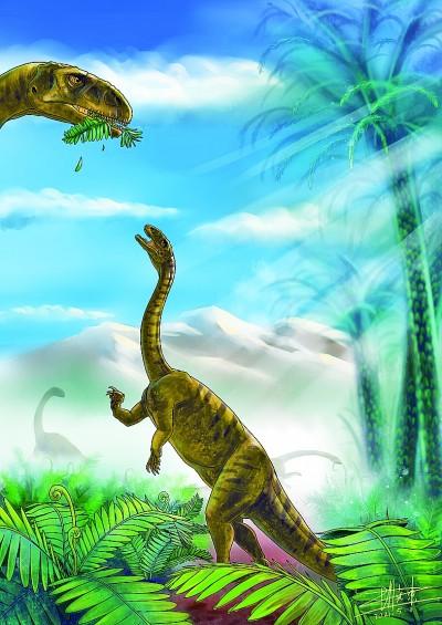 云南禄丰发现一新属种恐龙幼体化石