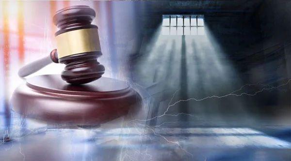 牢底坐穿:禾盛新材实控人被判无期 非法吸收存款149亿 强迫交易、敲诈勒索 身负11宗罪