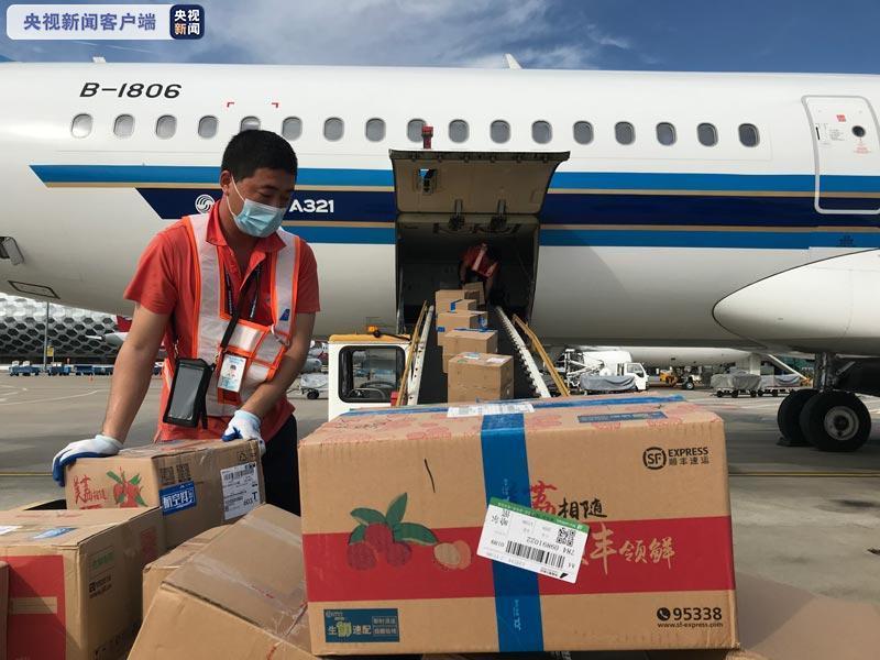 逆势出口 今年超1.5万吨广东荔枝出口20多个国家和地区