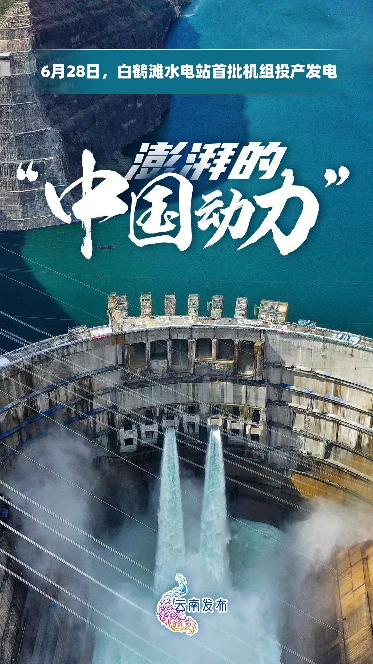 【聚焦】历史性时刻!今日鹤舞金沙
