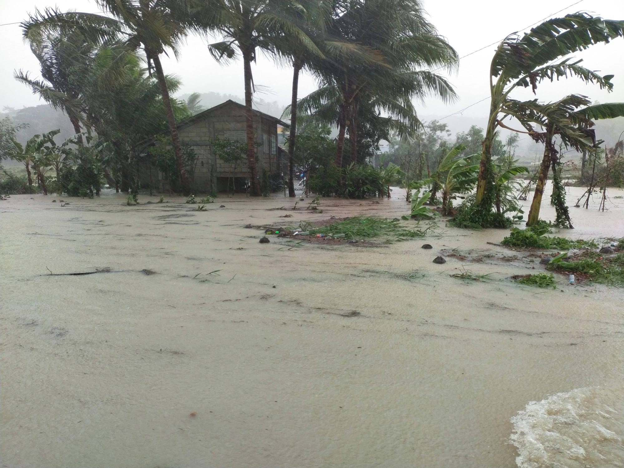"""今年第三号台风""""彩云""""已致菲律宾至少9人死亡"""