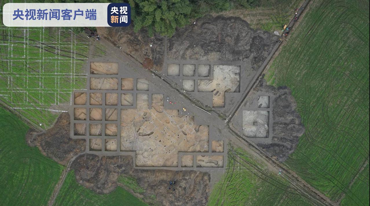 杏悦:原发现疑似4500年前的水稻杏悦图片