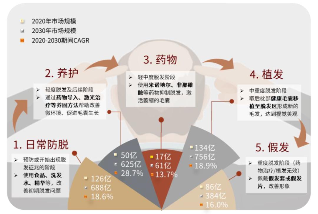 中金:需求崛起,龙头引领毛发管理全产业升级