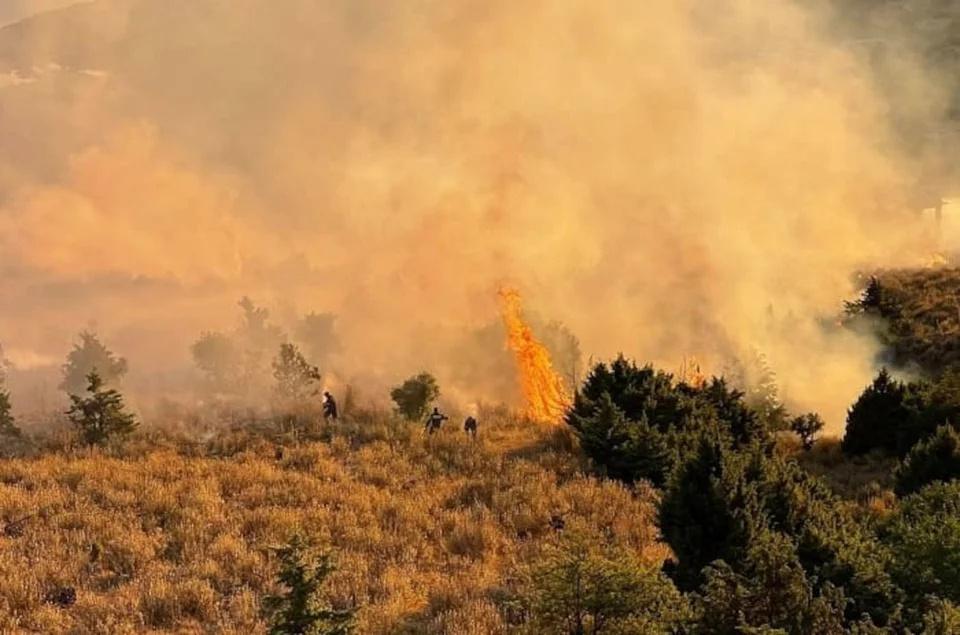 希腊高温持续 各地共发生64起山林火灾