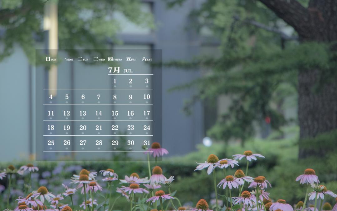 师大月历   迎接夏花的清晨,开启绚烂生活