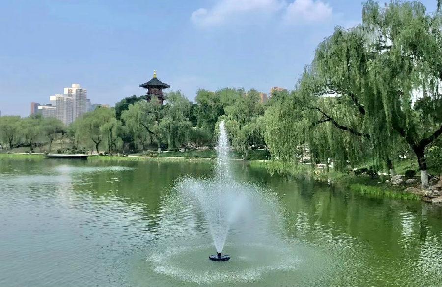 陕西西安唐兴庆宫公园提升改造项目如期开园
