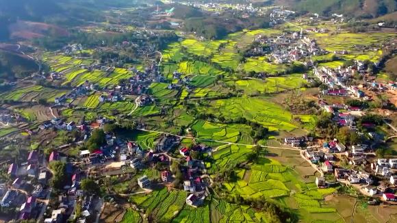 沃野千里 生态宜居——跟着央视镜头一起走进乡村看小康