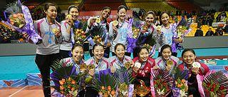 天津女排夺取联赛第10冠