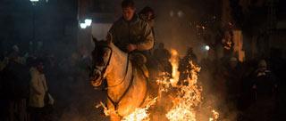 西班牙人庆圣安东尼节 骑马穿越火海惊心动魄