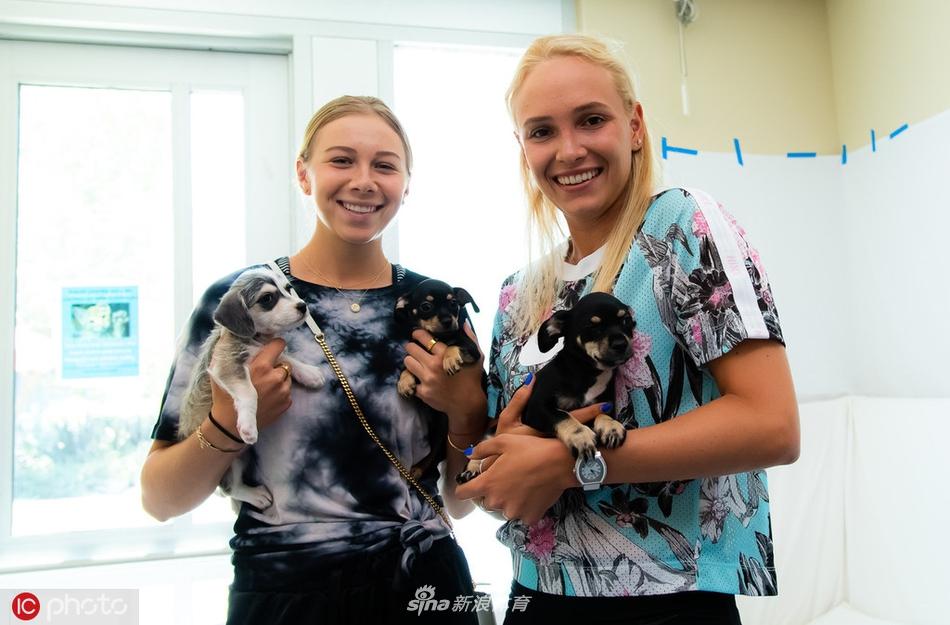 维基奇与阿尼西莫娃造访动物保护协会
