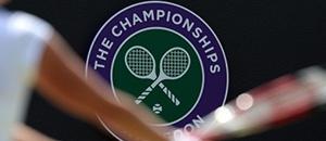 网球精彩图集