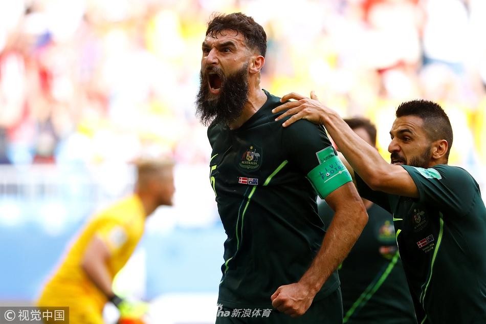[小组赛]丹麦1-1澳大利亚