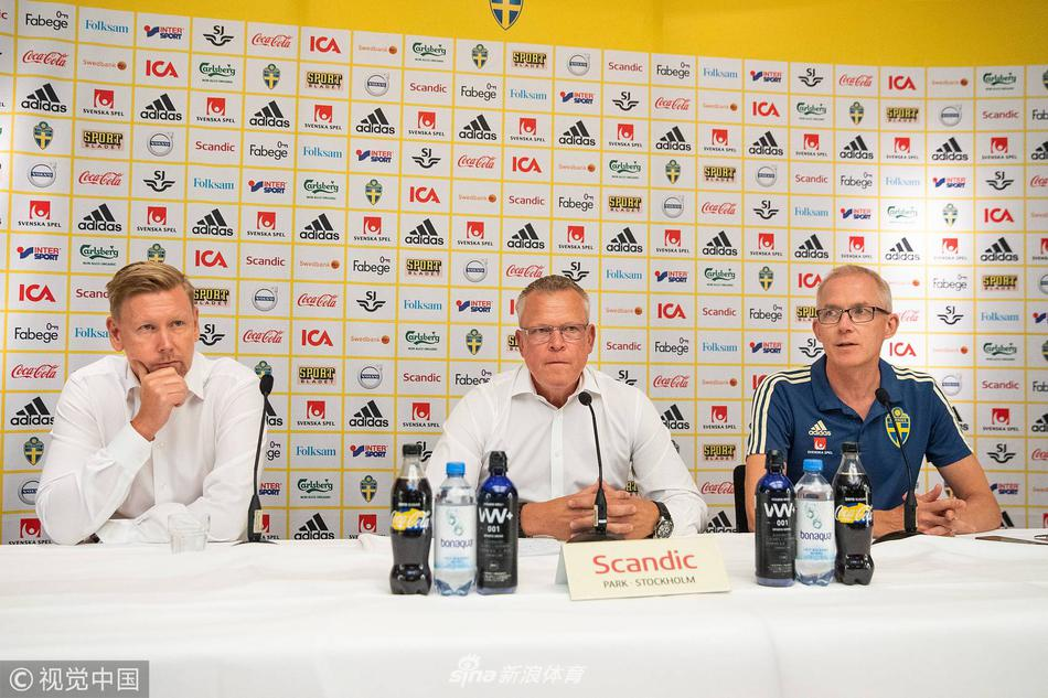 瑞典队告别世界杯回国开发布会