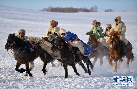 内蒙古克什克腾旗乌兰布统草原举行马术和驼队表演