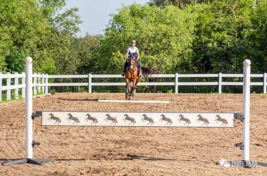 """骑马课堂:三个小贴士有效控制马匹向前""""冲""""得过快问题"""