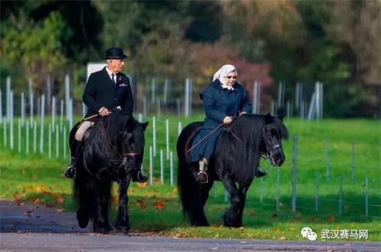 93岁英国女王公园骑马散心