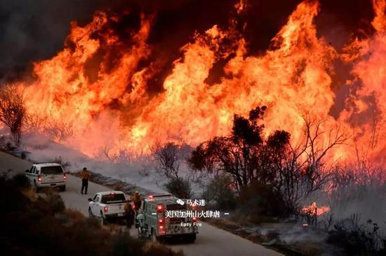 """这匹马,在美国加州山火的肆虐中成为""""英雄""""!"""