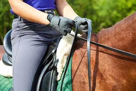 转载:马术骑乘|让身体自然平衡地完成空中轻快步换腿