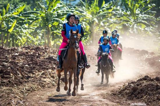 亚洲杯马术耐力赛将在中国举行!大陆马获中马协表彰