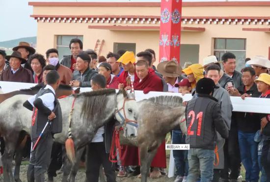 民间赛马,孕育中国马业未来