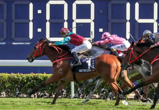 澳洲产马横扫香港短途锦标前六名