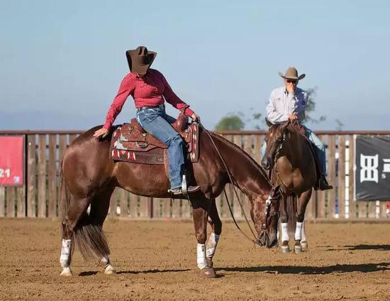 马背上的骑手