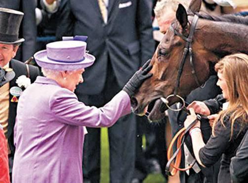 英国女王的爱驹