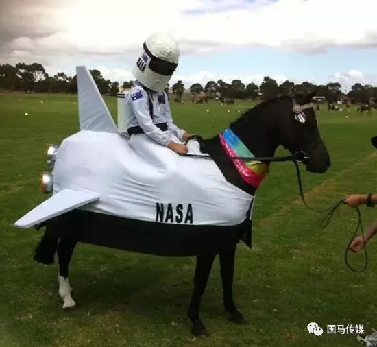 NASA,你们是不是发现了新世界