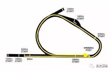 ▲图/Flemington Racecourse