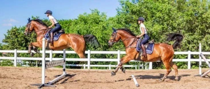 """有效控制马匹向前""""冲""""得过快问题"""